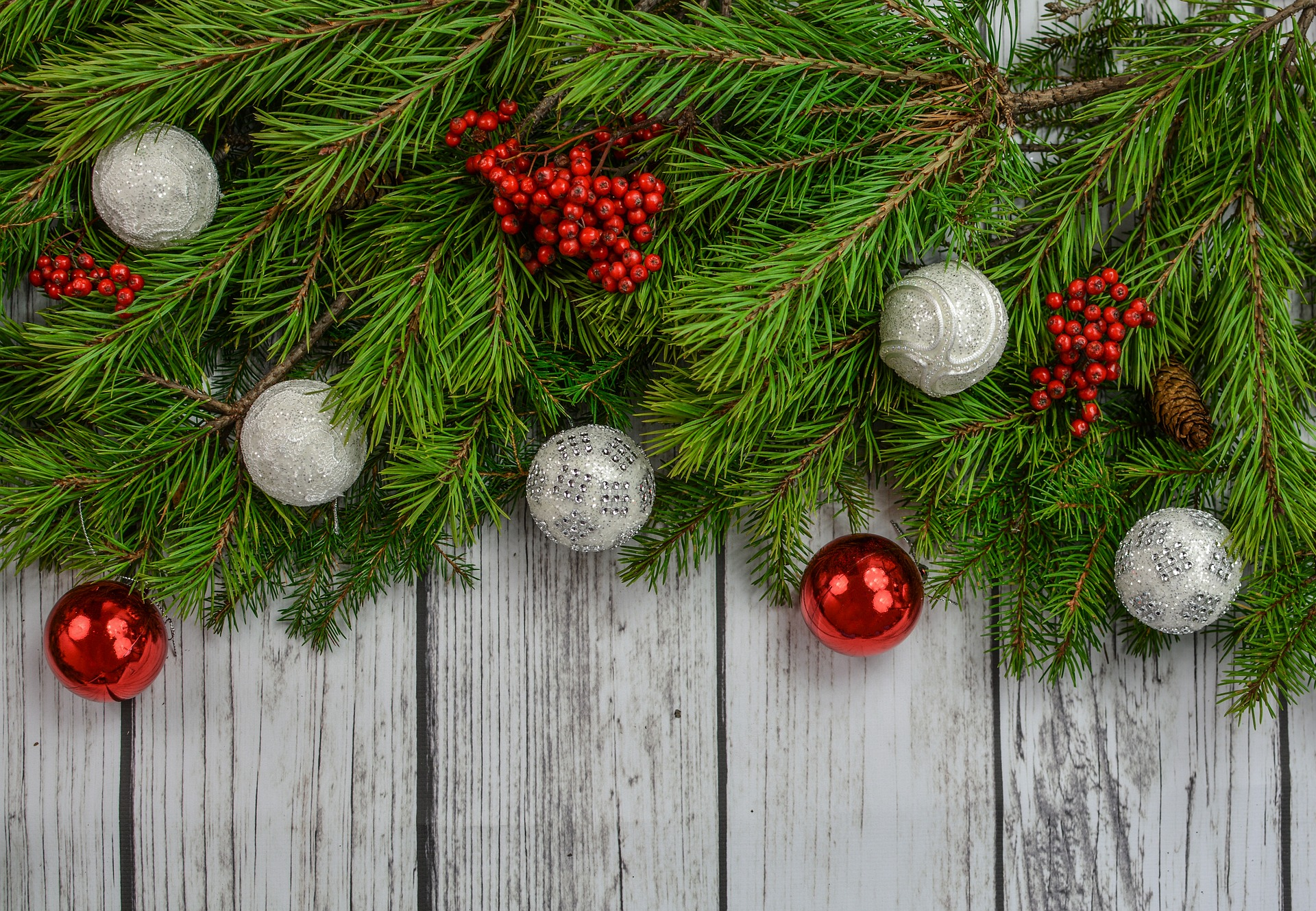 Happy Holidays from CECS, and best wishes for a Happy New Year!